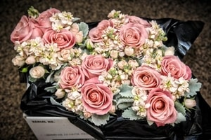 Bouquets often compliment or accent other wedding colors.