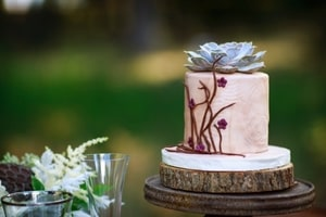 Closeup of wedding cake informally decorated to fit into the forest theme